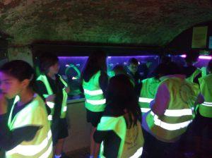 Fluohesjes onder de fluorescentielampen, een verrassend lichtspektakel!